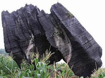 """四川长宁发现两块罕见的巨型""""奇石""""(图)"""
