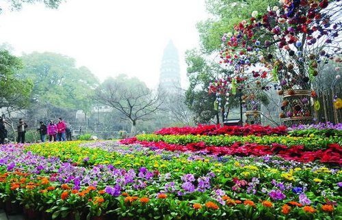 汤阴江南春天图片